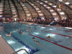 Photo entrainement nageurs